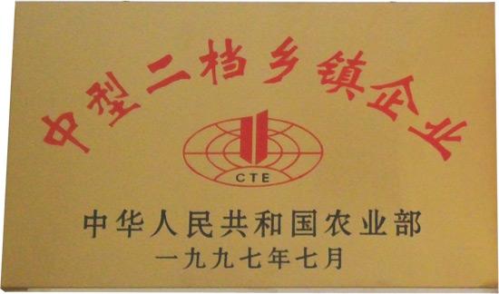 zhongxing二dangxiangzhen企业